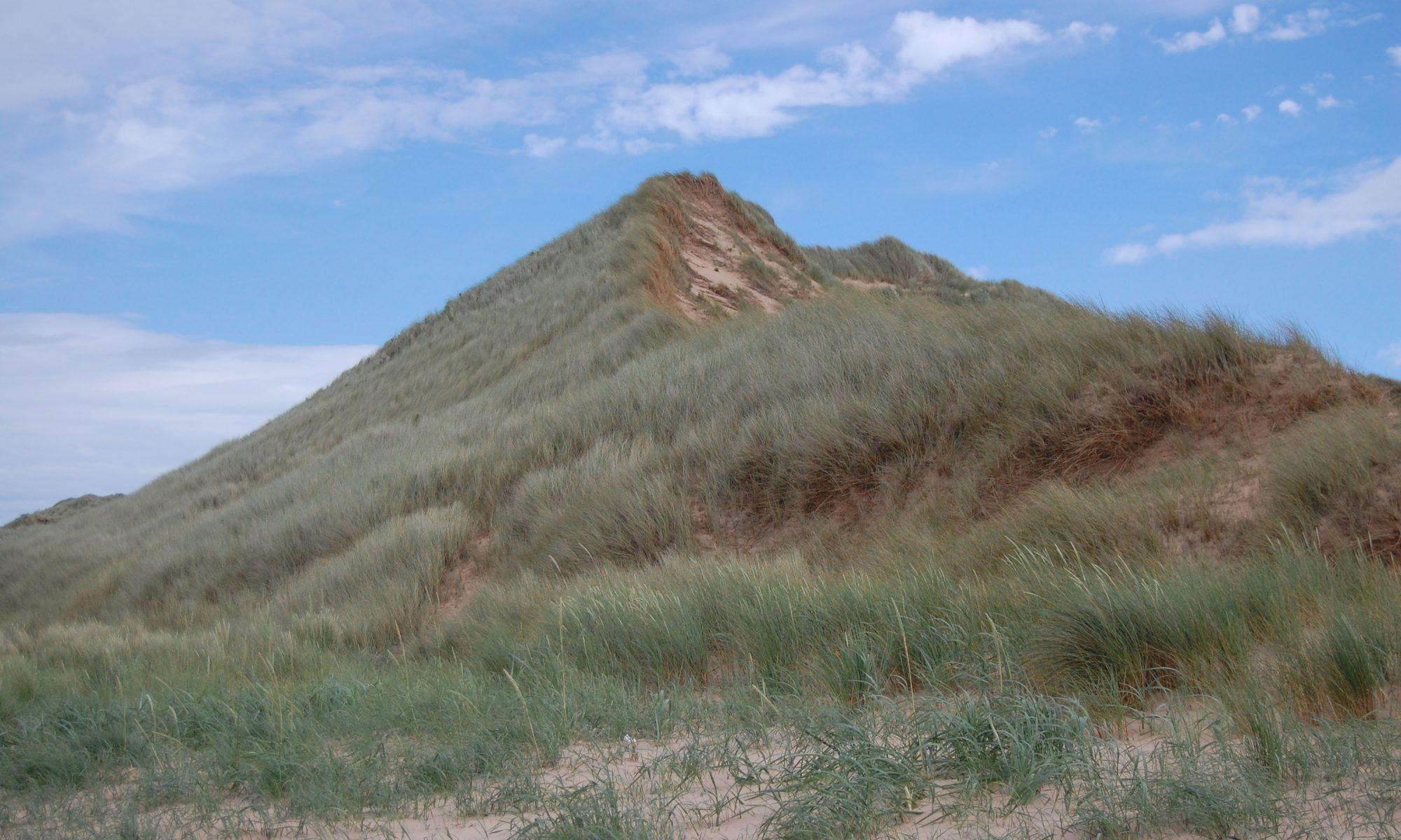 Rattray Head - Sand Dune